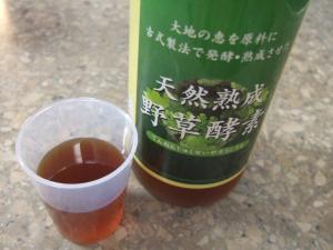 野草酵素味