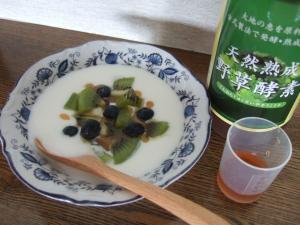 野草酵素+ヨーグルト