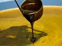 酵素液の発酵過程