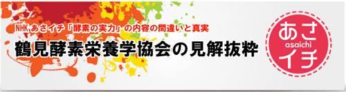 鶴見酵素栄養学協会