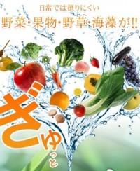 酵素黒酢革命